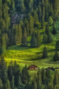 Grindelwald 13