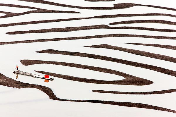 Fujian 13