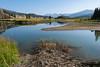 Beaver Dam - Yellowstone 2017