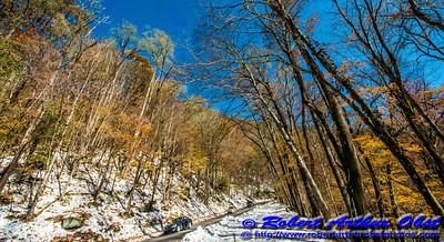 Obst FAV Photos Nikon D800 Destinations Wild Scenic National Parks Image 6834
