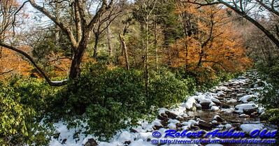 Obst FAV Photos Nikon D800 Destinations Wild Scenic National Parks Image 7004
