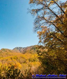 Obst FAV Photos Nikon D800 Destinations Wild Scenic National Parks Image 6851