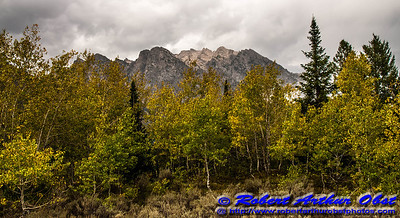 DWS-NPAMAF_5937_MAT-RORP.P1.USA.WY.Moose.GrandTetonNP.AutumnBeautyEmbracesMtStJohn-B (DSC_5937.NEF)