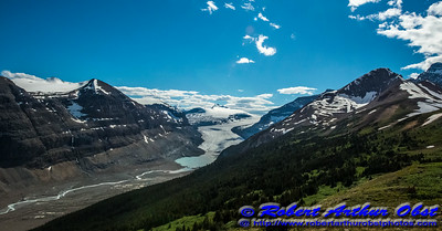 DWS-NPAMAF_8275_ATO.WestUSACanada2014-CAN.Alberta.SaskatchewanRiverCrossing.BanffNP.ParkersRidgeTrail.SaskatchewanGlacier-B (DSC_8275.NEF)