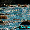 Sherry Rapids sparkling in the mid day sun on Section 2 of the wild Wolf River  (USA WI White Lake Langlade; RAO 2012 Nikon D300s Image 4316)