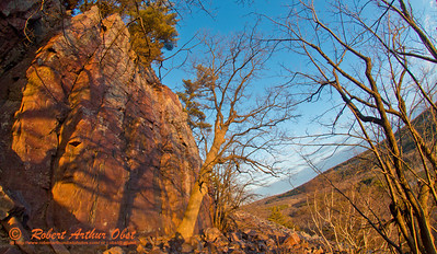Hiker's view from the Balanced Rock Trail of the last golden rays of a spring sunset highlighting radiant bluffs and foliage within Devils Lake State Park (USA WI Baraboo; Obst FAV Photos 2013 Nikon D800 Destinations Wild Scenic Image 8880)