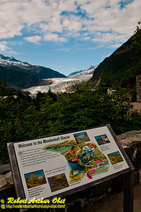 Hikers along Mendenhall River and Steep Creek will follow the bubble path of Sockeye Salmon and Coho Salmon and Cutthroat Trout and Dolly Varden Char within Tongass National Forest (USA Alaska Juneau)
