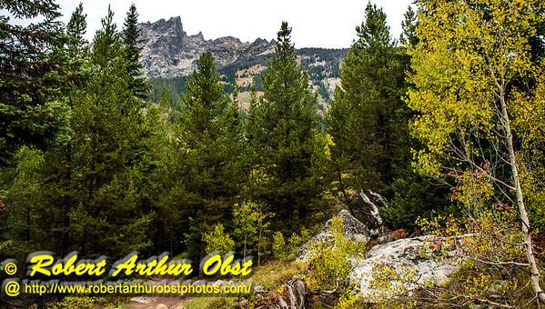 DWS-Hiking_5941_MAT-RORP.P1.USA.WY.Moose.GrandTetonNP.AutumnBeautyEmbracesTetonMountains-B (DSC_5941.NEF)