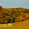 Hikers' and trail runners' view of blue skies and brilliant colors during autumn within Indian Lake County Park (USA WI Cross Plains; Obst FAV Photos 2012 Nikon D300s Destinations Wild Scenic Hiking Image 3640)