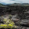DWS-Hiking_6647_ATO.WestUSACanada2014-USA.ID.Arco.CratersOfTheMoonNM.ColorfulVolcanicLunarLikeLandscape-B (DSC_6647.NEF)