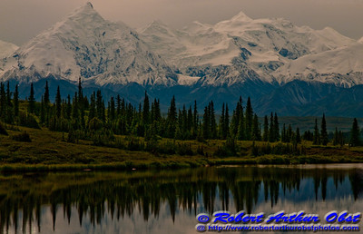 Reflections of Denali or Mount McKinley and its forests in Wonder Lake within Denali National Park (USA Alaska Denali Park)