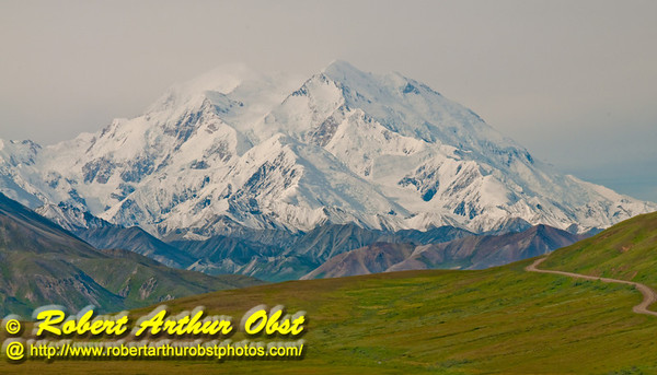 View of gorgeous and snowy Denali or Mount McKinley from Denali Park Road within Denali National Park (USA Alaska Denali Park)