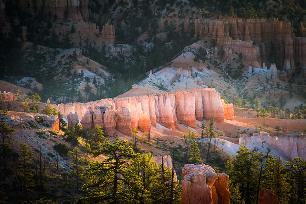 Bryce Canyon hoodoos glowing at sunrise.
