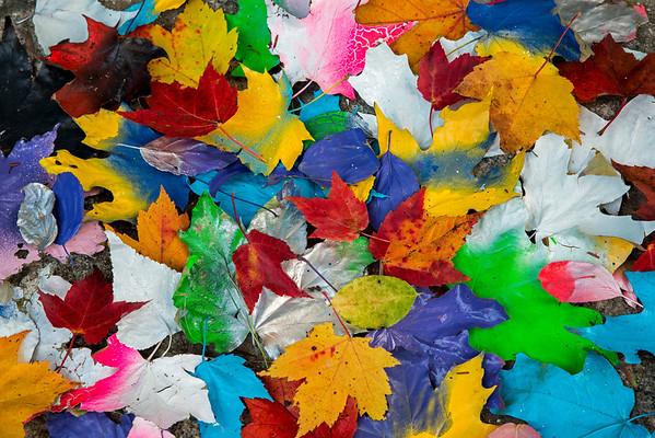 Colors-TEMP-SHARP
