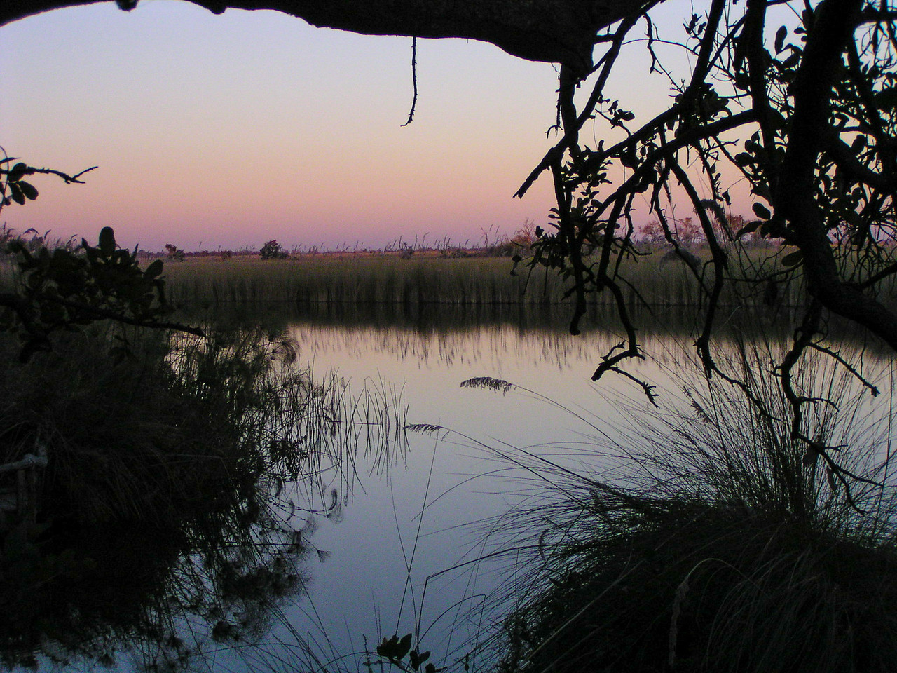 Moremi Nature Reserve