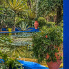 Hidden pool, Majorelle Garden