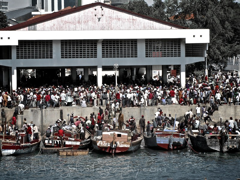 Fish Market Dar es salaam