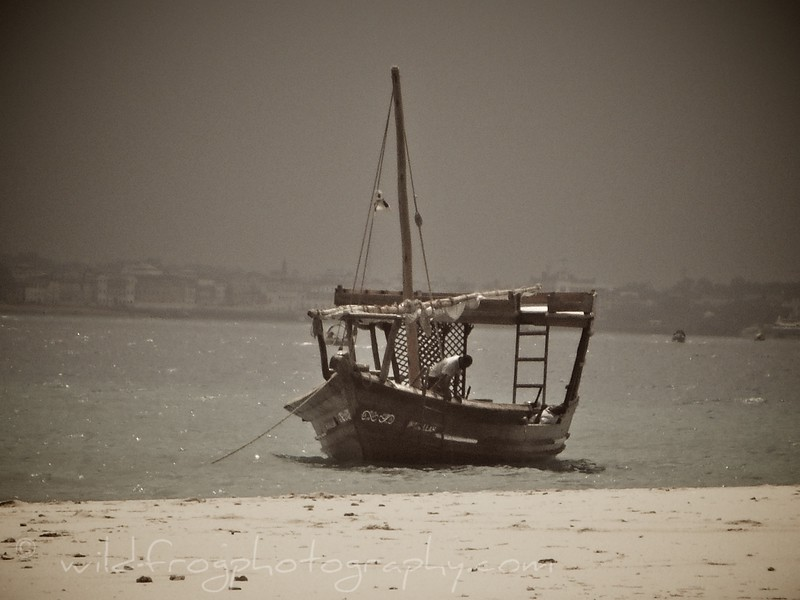 Island off stone town - Zanzibar