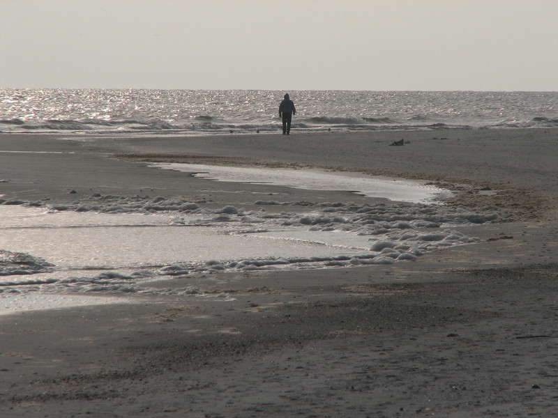 It is February and cold or not - we walk the beach...