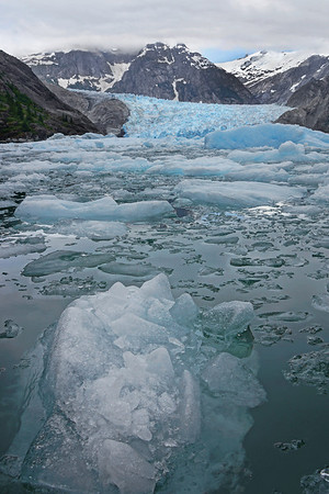 Ice flow at LeConte Glacier near Wrangell, AK, #0419