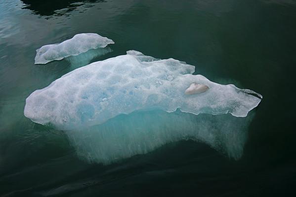 Ice flow near Shakes Glacier, Wrangell, AK, #0422