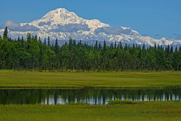 Mt. McKinley (Denali) with pond on southern exposure, #0427