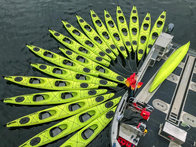 Kayak array
