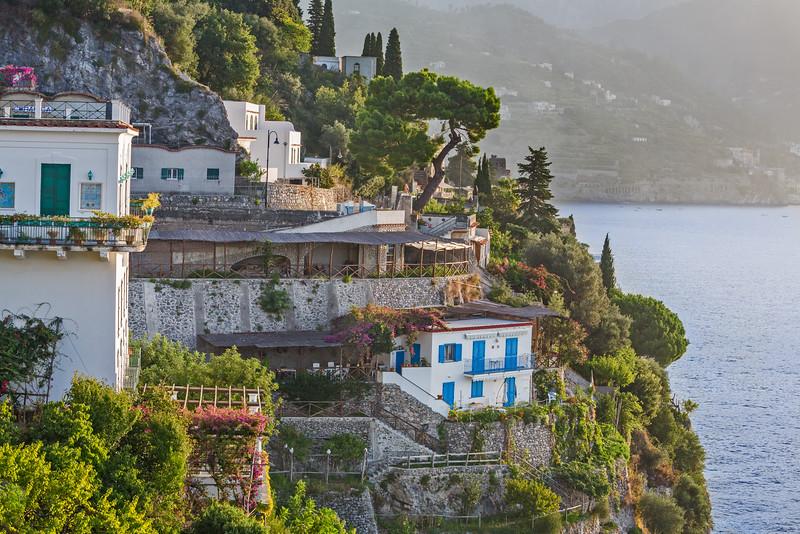 Olive Covered Hillside near Amalfi
