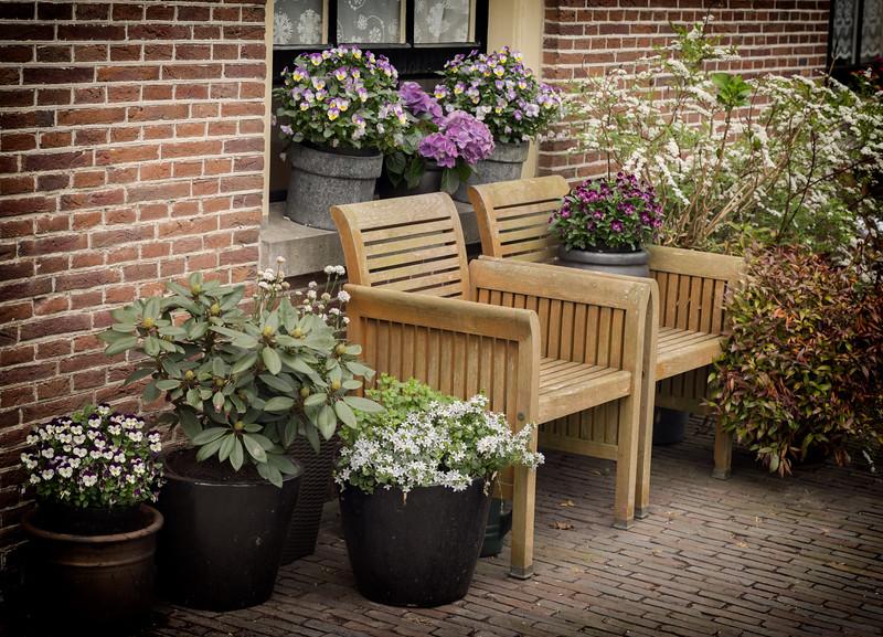 Flowers inside Hofje van Oorschot