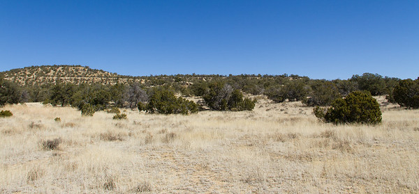 Sandstone ridge containing petroglyph site.