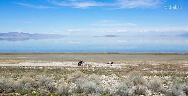 Antelope Island Yoga Shoot