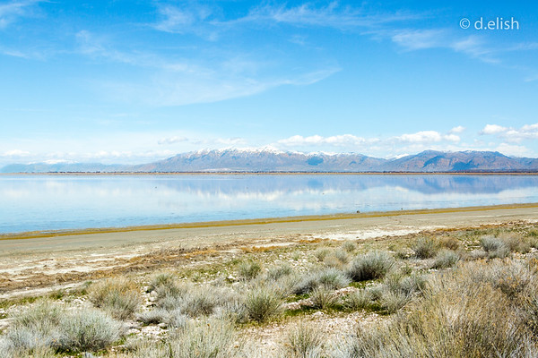 Cool Blue Antelope Island Reflection