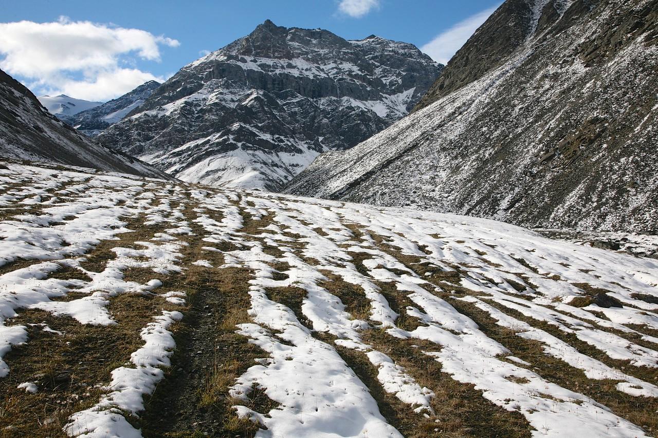 Caribou trails on the upper Jago River - Arctic National Wildlife Refuge