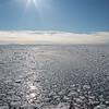 Pack ice breaking up in Olga Strait, Svalbard