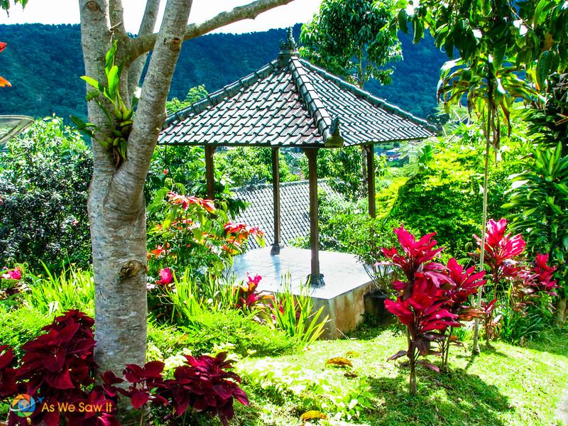 Garden in Bedugul