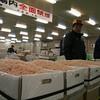 Shrimp...thousands of shrimp!