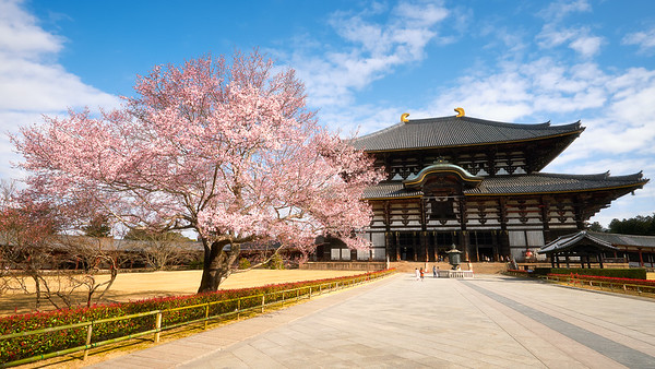 Todai-ji Temple – Nara, Japan