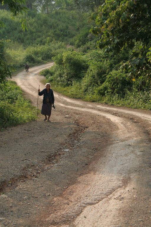 Woman coming in from the fields with a cow slowly following her.