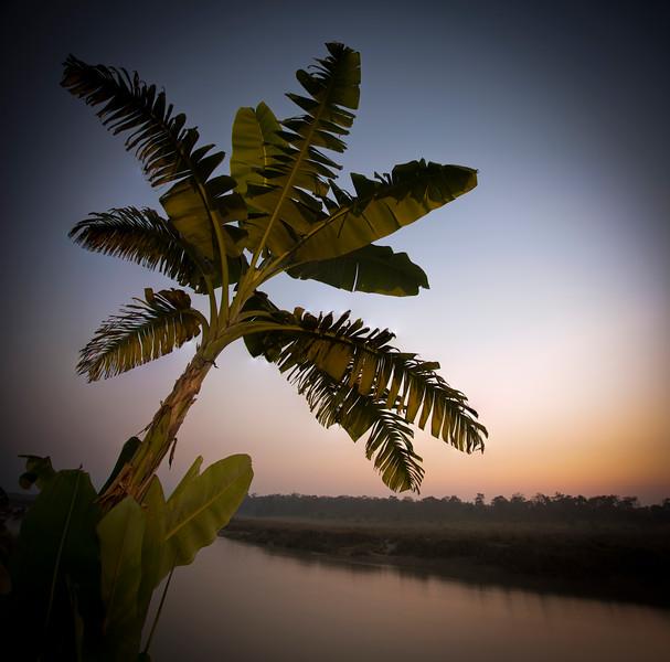 """Scenes from Chitwan XV""<br /> <br /> Sauraha sunset."