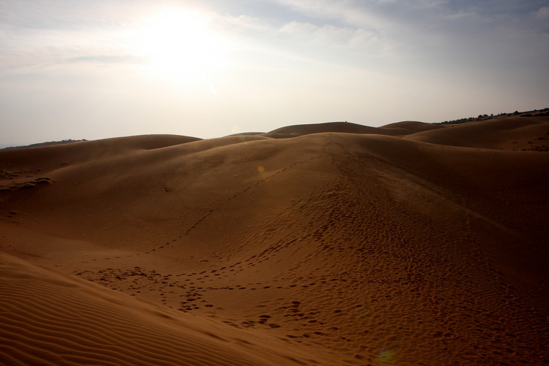 Dotted Dunes