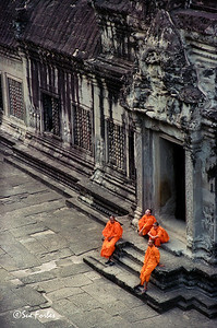 Contrast in colors Monks at Angkor Wat, Siem Reap, Cambodia