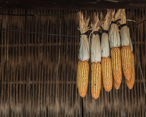Duong Lam ancient village Vietnam