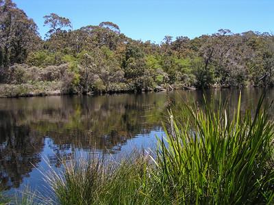 Bibbulmun Track, Walpole, Western Australia