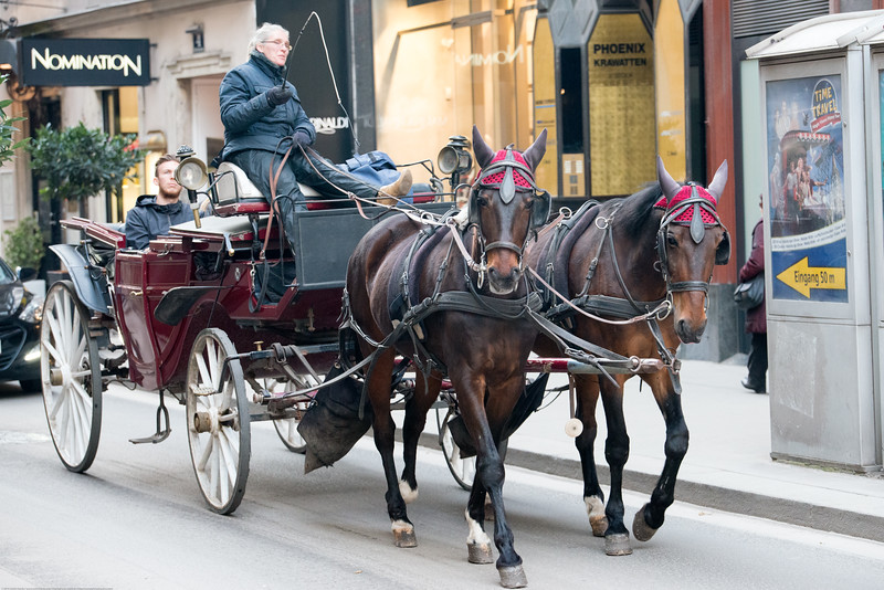 Horse carriage street tours in Vienna, Austria.