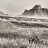 Morning light (black-white conversion) on the Big Badlands near the Ben Reifel Visitor Center in northeastern Badlands National Park near Interior, South Dakota, #0720