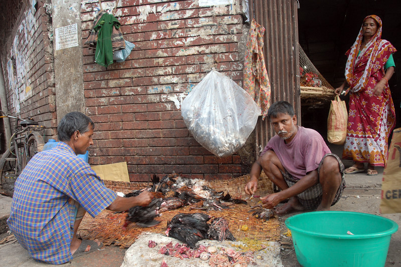 Life chicken in the market.<br /> Dhaka (Bangla: ঢাকা, pronounced [ɖʱaka])— (Dacca) is the capital city of Bangladesh (Bengali: বাংলাদেশ [ˈbaŋlad̪eʃ] Bangladesh). Dhaka, located on the banks of the Buriganga River is a megacity with a population of over 12 million. Dhaka is known as the City of Mosques and renowned for producing the world's finest muslin. it is a center for culture, education and business.
