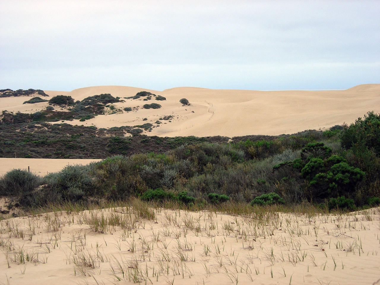 Sand dunes all around.