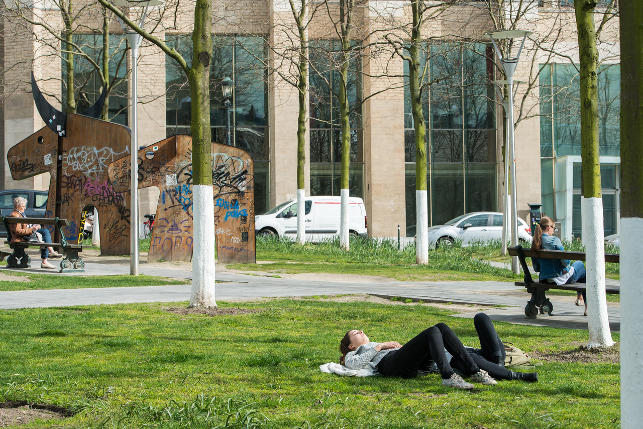 People laze on the grass in front of St Michael and St Gudula Cathedral, Brussels, Place Sainte-Gudule, Brussels, Belgium.