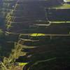 Banaue Terraces