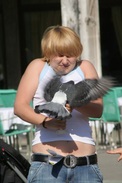 Pigeon Attack